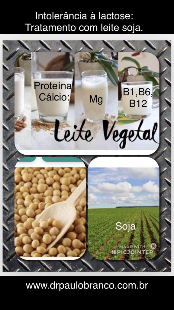 intolerancia a lactose tratada com leite vegetal.